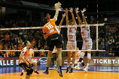 BR Volleys überzeugen auch in der Championsleague